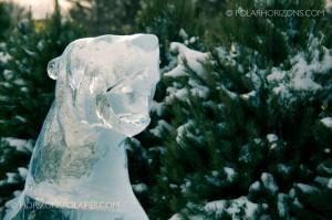 Canada's Ice Polar Bear - Winterlude 2013