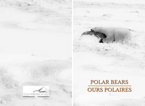 Cove of the Polar Bears notebook